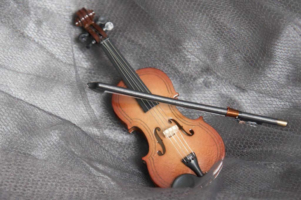 a tree contractors son become violinist